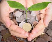 financial aid consulting plant growing out of money